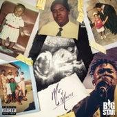 Paradise (feat. Zoocci Coke Dope) de Bigstar Johnson