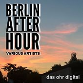 Berlin After Hour de Various Artists