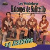 15 Éxitos by Los Halcones De Salitrillo