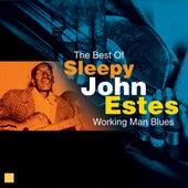 Working Man Blues (The Best Of) by Sleepy John Estes