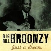 Just A Dream by Big Bill Broonzy