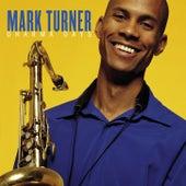 Dharma Days by Mark Turner