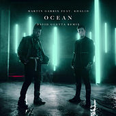 Ocean (David Guetta Remix) by Martin Garrix