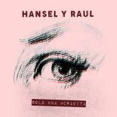 Solo Una Miradita by Hansel Y Raul