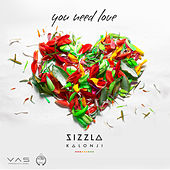 You Need Love by Sizzla