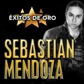Éxitos De Oro de Sebastian Mendoza