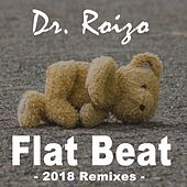 Flat Beat (2018 Remixes) by Dr. Roizo