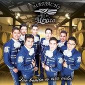 Que Bonita Es Esta Vida de Mariachi Así Es México