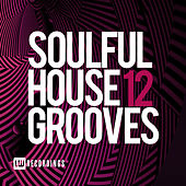 Soulful House Grooves, Vol. 12 - EP by Various Artists