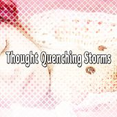 Thought Quenching Storms de Thunderstorm Sleep