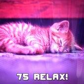 75 Relax! by Baby Sleep Sleep