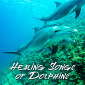 Healing Songs of Dolphins (Sleep Music, RelaxingTherapy Sounds for Reduce Stress, Insomnia and Depression, Inner Peace, Well-Being) by Various Artists