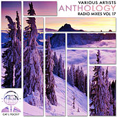Anthology Radio Mixes, Vol. 17 - EP by Various Artists