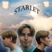 Starlet by Lk N Basor