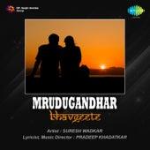 Mrudugandhar Bhavgeete by Various Artists