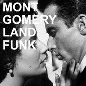 Montgomery Land Funk de The Montgomery Brothers