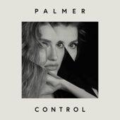 Control de PALMER