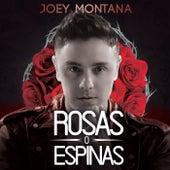 Rosas O Espinas by Joey Montana