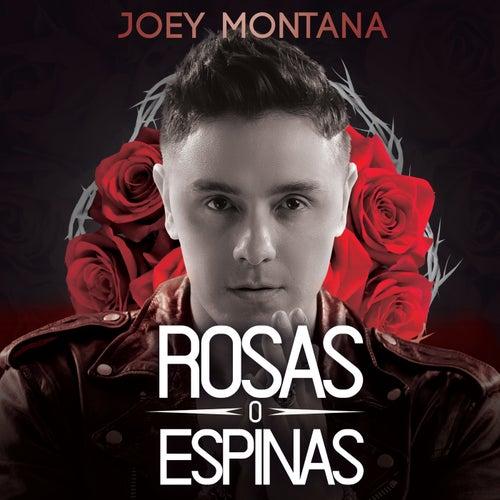 Rosas O Espinas de Joey Montana