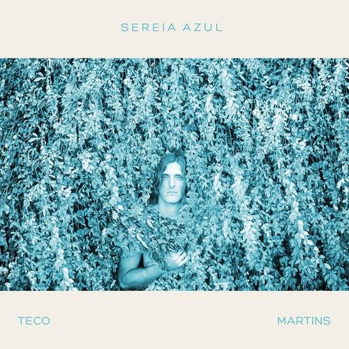 Sereia Azul de Teco Martins