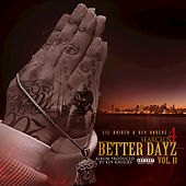 Search'n 4 Better Dayz, Vol. II von Lil Raider