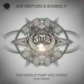 The World That You Know von Ace Ventura