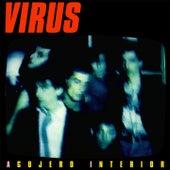 Agujero Interior de Virus