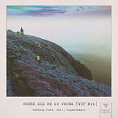 Where Did We Go Wrong (feat. Cali & PaperShapes) (VIP MIX) de Wallaby
