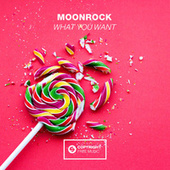 What You Want de Magnuss
