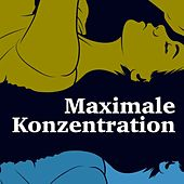 Maximale Konzentration von Various Artists
