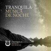 Tranquila Música de Noche de Various Artists