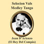 Seleccion Vals Medley: Alma Dolorida / Valsecito de Antes / Valsecito Criollo / Pasion de Juan D'Arienzo