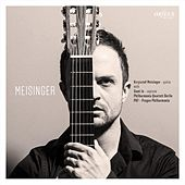Meisinger by Various Artists