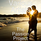 The Passion Project by Various Artists