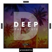 Deep Radio Cuts, Vol. 1 von Various Artists