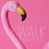 Walk House Anthems, Vol. 1 by Various Artists