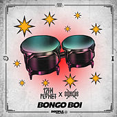 Bongo Boi de 12th Planet