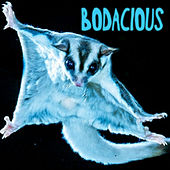 Bodacious von LuminusfoxX