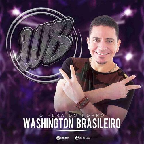 Vai Dar ou Não Dar Amor de Washington Brasileiro