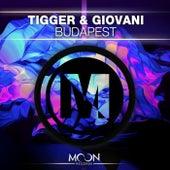 Budapest by Tigger