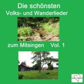 Top 30: Die schönsten Volks- Und Wanderlieder zum Mitsingen, Vol. 1 by Various Artists