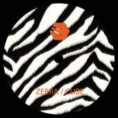 Zebra / Cube (Cold vs. Futuregrapher) - Single de Various Artists