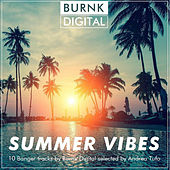 Summer Vibes - EP by Various Artists