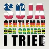 I Tried (Don Corleon Remix) - Single by Soja