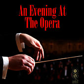 An Evening At The Opera by Agnes Disney