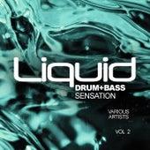 Liquid Drum & Bass Sensation, Vol.2 - EP de Various Artists