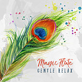 Magic Flute - Gentle Relax, Peaceful Thoughts, Calm Sounds, Quiet Mind, Blissful Relaxation, Beautiful Music de Relaxing Flute Music Zone