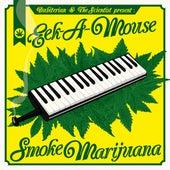 Smoke Marijuana by Scientist