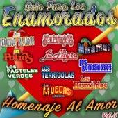 Solo Para Los Enamorados Homenaje Al Amor, Vol.5 by Various Artists