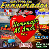 Solo Para Los Enamorados Homenaje Al Amor, Vol.1 by Various Artists